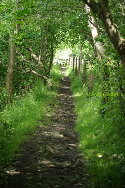 oldrailway