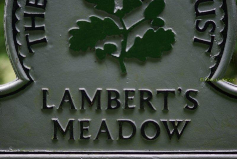 lamberts wood