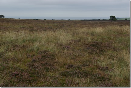 Sneaton Low Moor