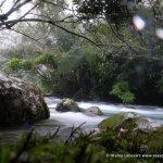 Nuoc Mooc Eco Trail