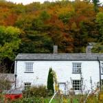 Fall in Cumbria