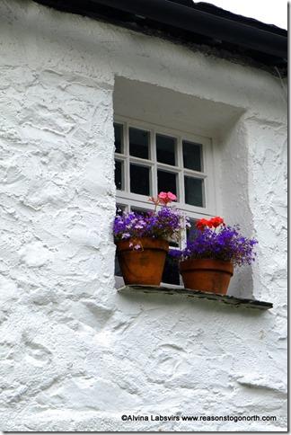 windowbpx