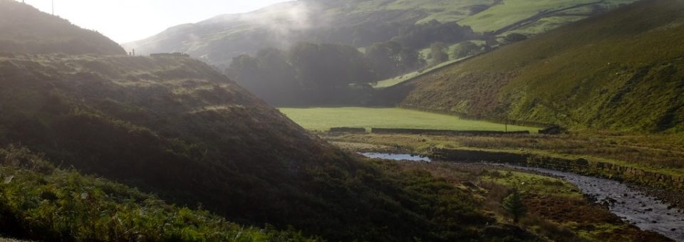 Forest of Bowland