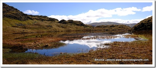 Tarn at Leaves