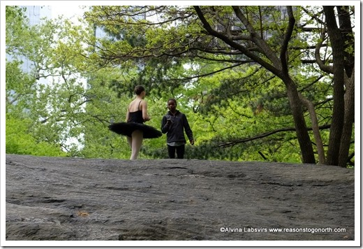 Dancer in Central Park