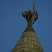Reasons in Riga