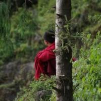 Bhutan – Day 1