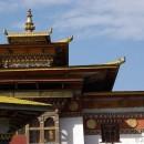 Paddy Fields of Punakha