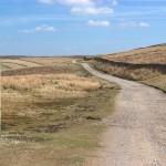 Yorkshire Stroll