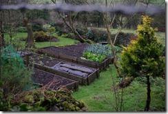 veggarden